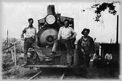 Waialua plantation locomotive crew, ca. 1930s. Sugar cane was loaded in railroad cars and hauled to the mill. (Photo courtesy of Adam Holmberg.)